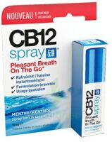 CB 12 Spray haleine fraîche 15ml à REIMS