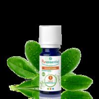 Puressentiel Huiles essentielles - HEBBD Ravintsara BIO* - 30 ml à REIMS