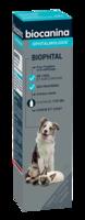 Biophtal Solution externe 125ml à REIMS